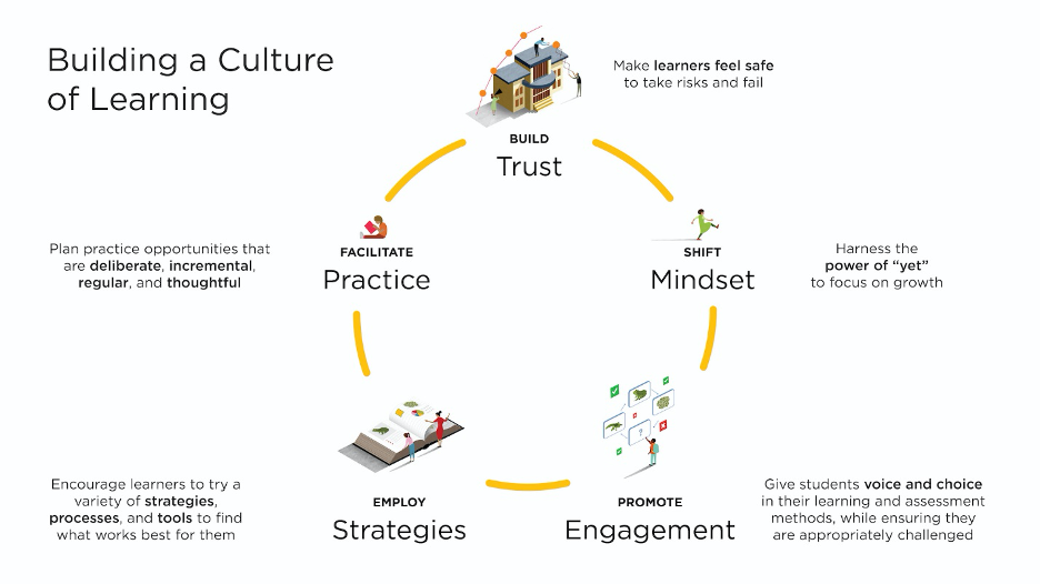 Building a culture of learning